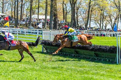 Spring Races D5-430