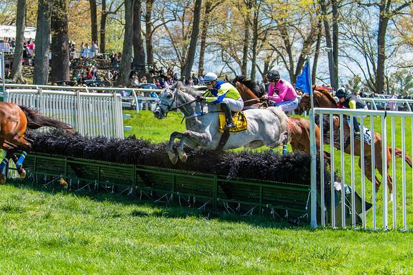 Spring Races D5-440