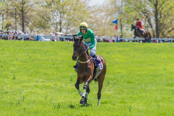 Spring Races D5-414