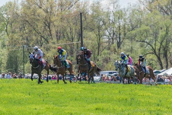 Spring Races D5-419