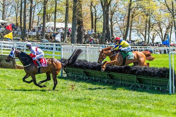 Spring Races D5-429