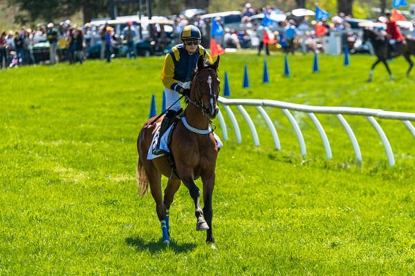 Spring Races D5-665