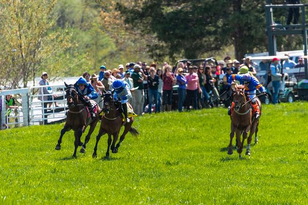 Spring Races D5-688
