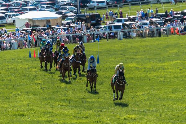 Spring Races D5-669
