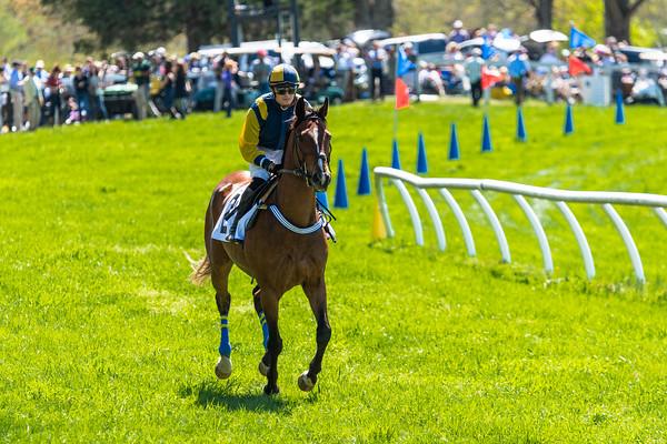 Spring Races D5-664