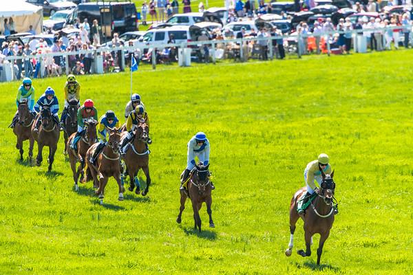 Spring Races D5-675