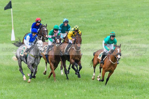 Spring Races D500-38