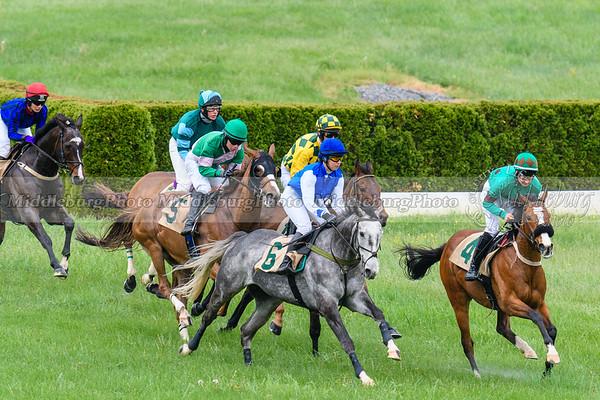 Spring Races D500-40