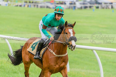 Middleburg Spring Races-13