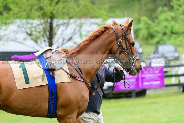 Middleburg Spring Races-165