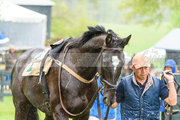 Middleburg Spring Races-181