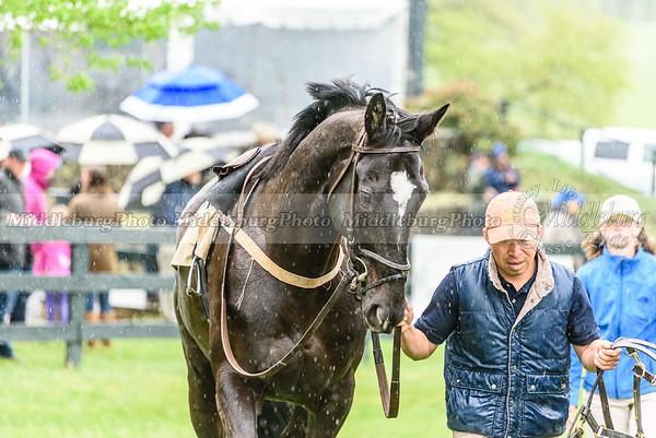 Middleburg Spring Races-180