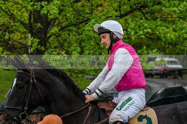 Spring Races D500-348
