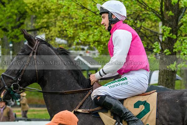 Spring Races D500-349