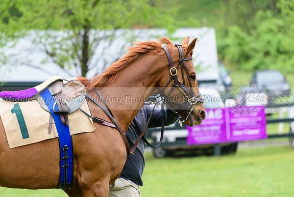 Middleburg Spring Races-166