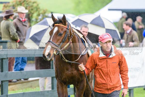 Middleburg Spring Races-159