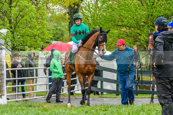 Spring Races D500-509