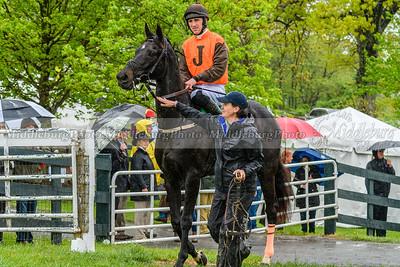 Spring Races D500-501