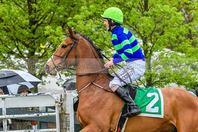 Spring Races D500-505