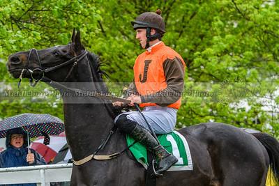 Spring Races D500-503