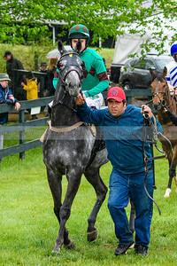Spring Races D500-607