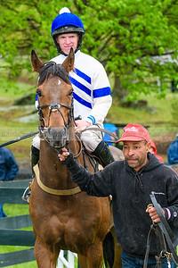 Spring Races D500-614