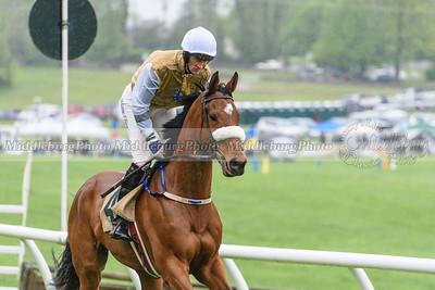 Middleburg Spring Races-403