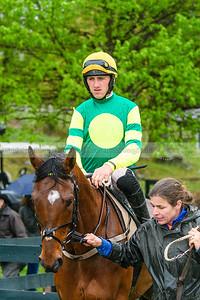 Spring Races D500-749