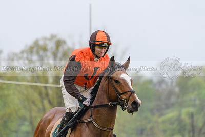 Middleburg Spring Races-557