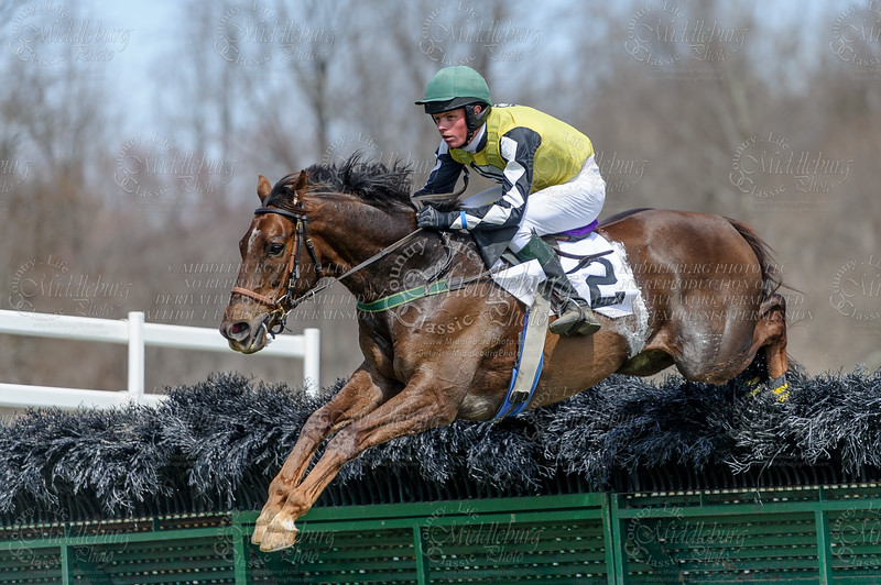 Old Dominion Hounds Point to Point