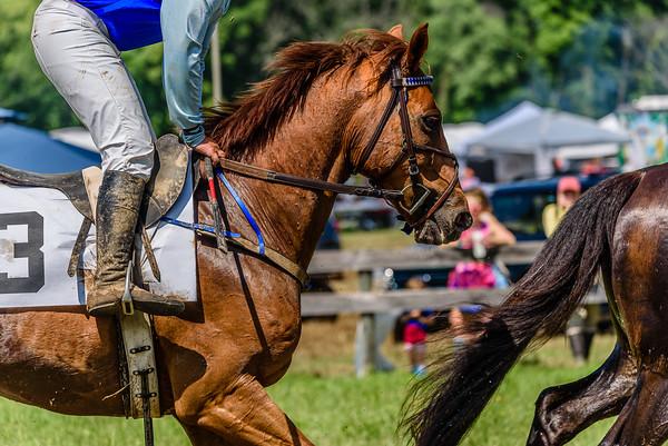 Potomac Races-296