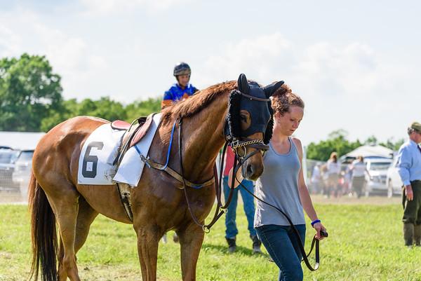 Potomac Races-593