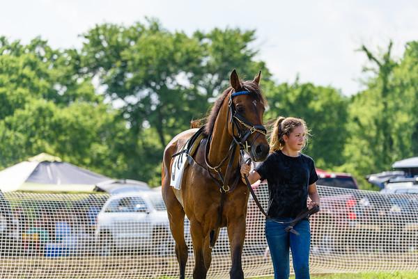 Potomac Races-594