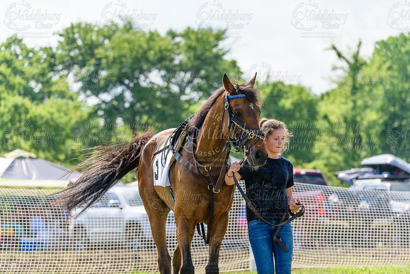 Potomac Races-595