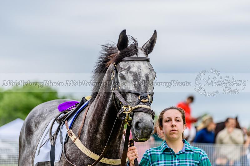 potomac races-312