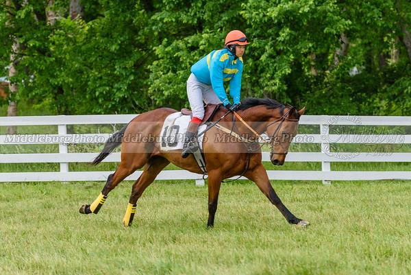 potomac races-921