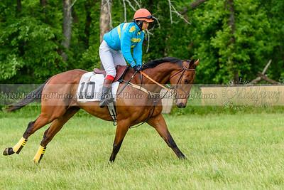 potomac races-922