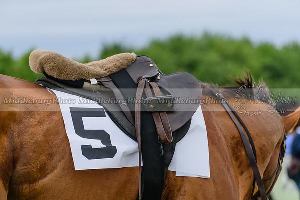potomac races-895