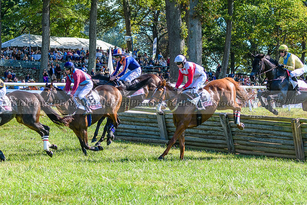 VA Fall Races D500-186