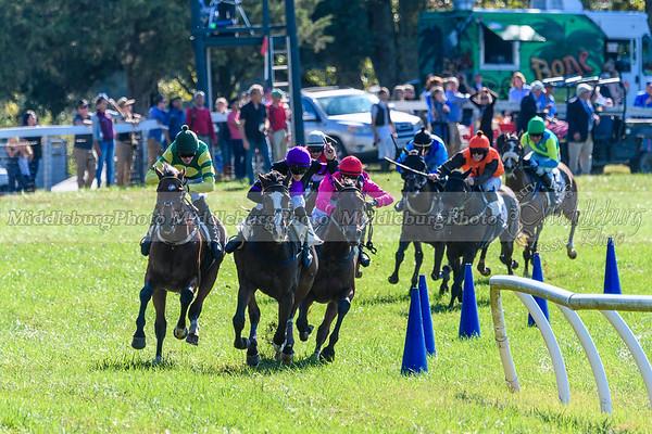 VA Fall Races D500-304