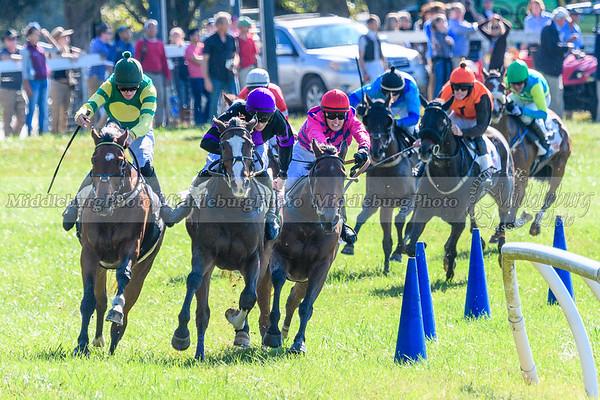VA Fall Races D500-305