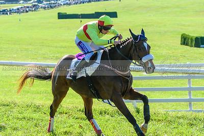 VA Fall Races D500-379