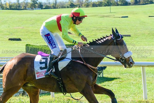 VA Fall Races D500-384