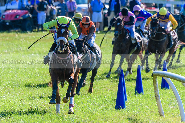 VA Fall Races D500-358