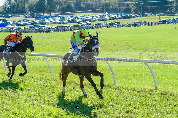VA Fall Races D500-374