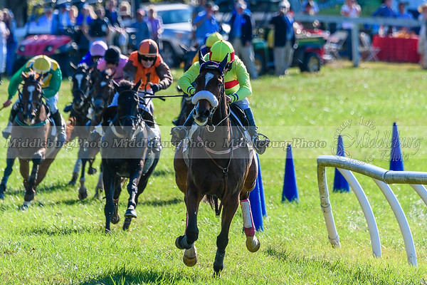 VA Fall Races D500-366