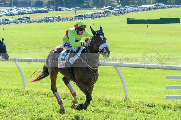 VA Fall Races D500-377