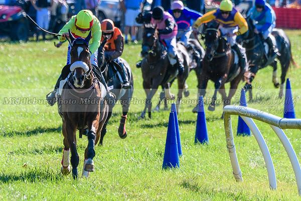 VA Fall Races D500-359