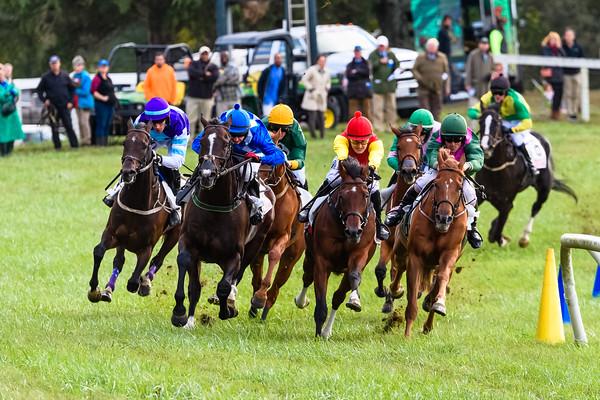 VA Fall Races D5-859