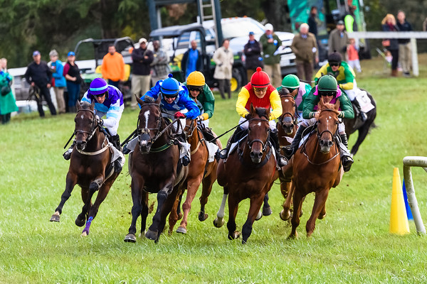 VA Fall Races D5-860